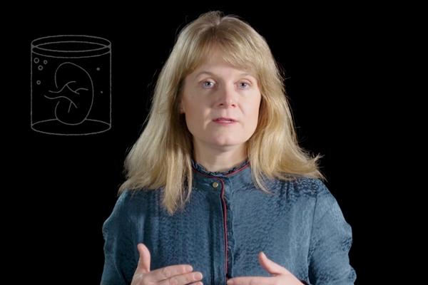 Patricia Dankers - Reversing organ damage - Eye-openers